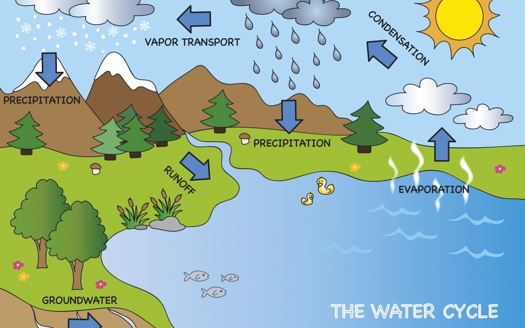 Our Precipitation and Water Cycle: How they Work and How Climate Change is Affecting These Systems