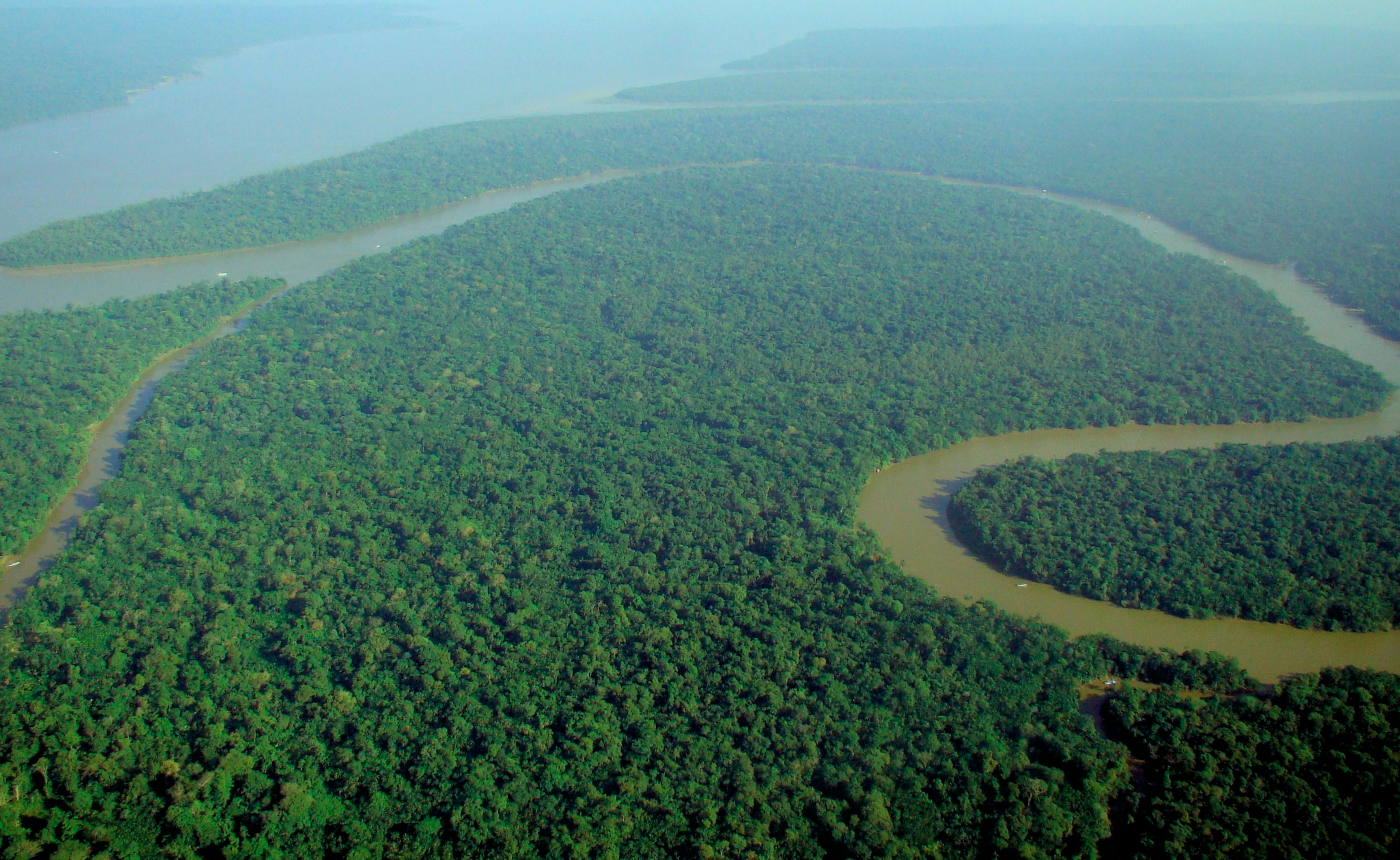 the Amazon Rainforest on the pros and cons of climate change