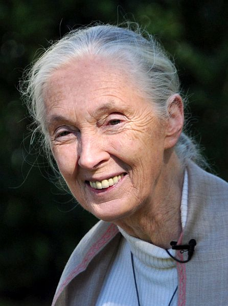 ​Environmentalist Advocate  Jane Goodall