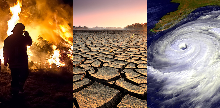 effects of climate change and global warming