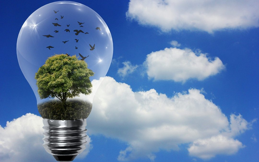 Everything to Know About Energy Conservation